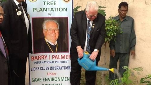 blog-palmer-trees-rap-india